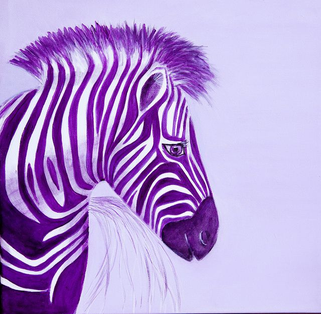 Zebra Purple Popart Pop Art Paintings by Spangles44 join us at blink_again, via Flickr