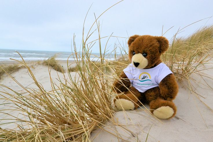 Der Urlaubär am Strand von Henne in Dänemark an der Nordsee ...