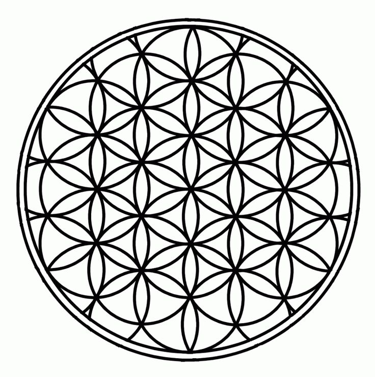 Sacred Geometry. The Flower of Life is considered an ancient symbol said to contain significant spiritual information. When used in a crystal grid, the Flower of Life can help to amplify your intentions and help manifest your goals into reality. www.msblisscoach.com