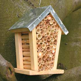 mason bee house super for the garden one pair of mason bees can pollinate