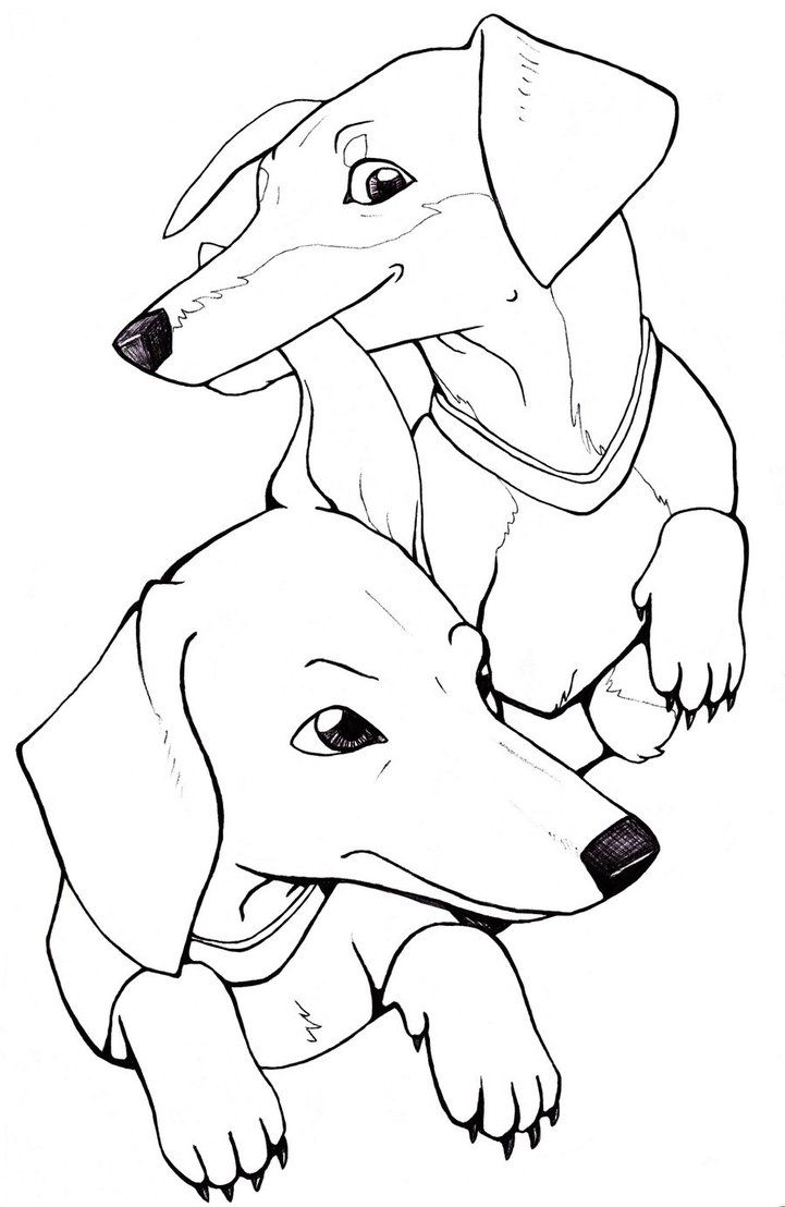 dachshund puppies coloring pages - photo#24