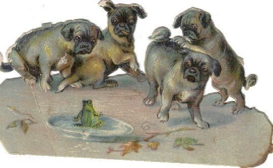 Victorian Die Cut Scrap Pug Puppies & Frog c1880
