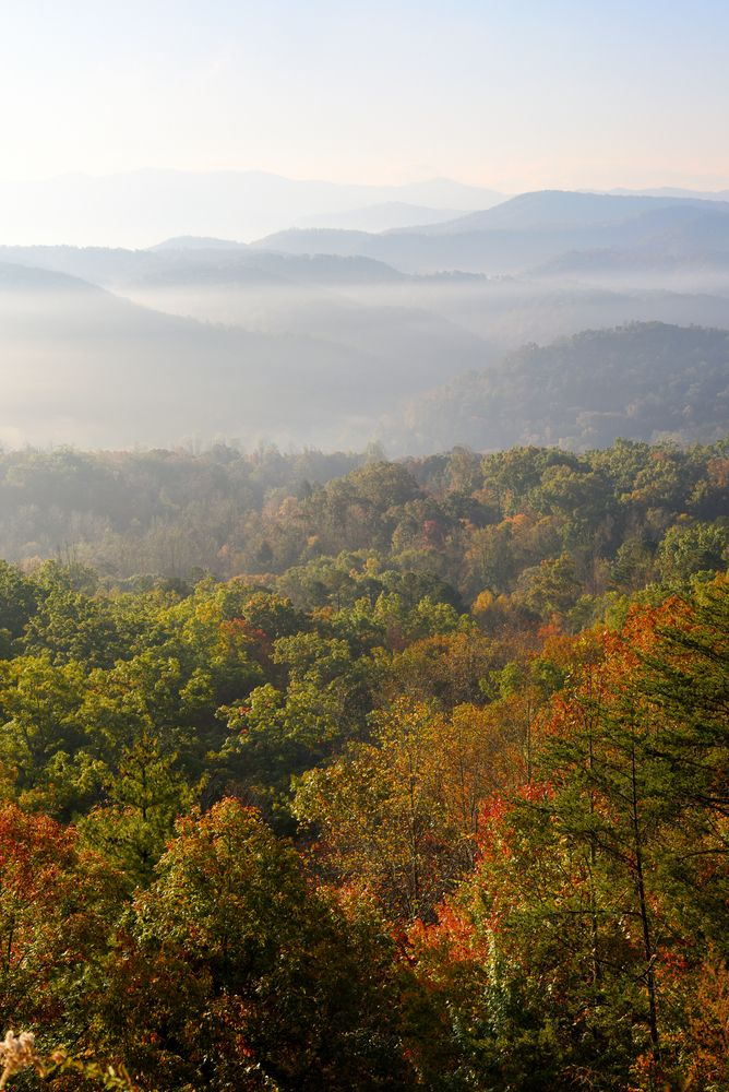 1000 images about smoky mountains on pinterest hiking for Privately owned cabins in the smoky mountains