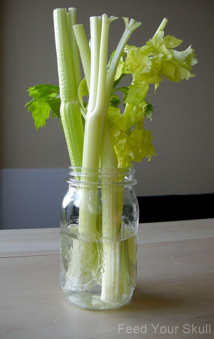 rejuvenate celery