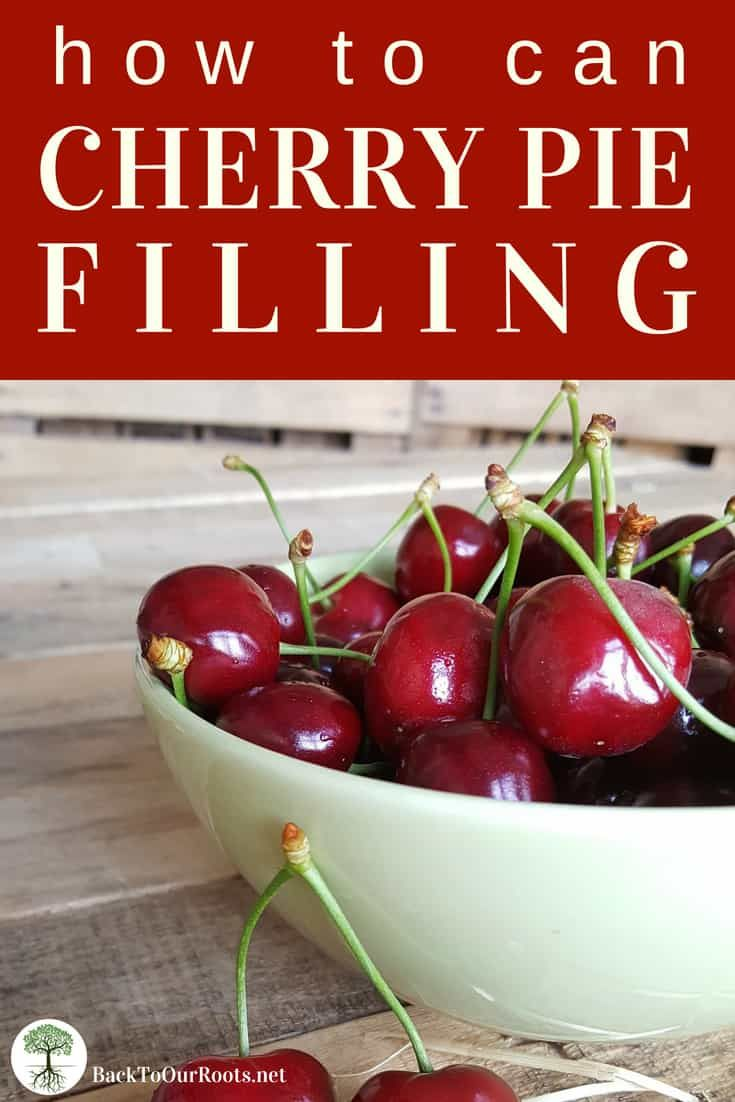 Homemade Cherry Pie Filling A Canning Recipe Recipe Canning Recipes Canning Cherry Pie Filling Cherry Pie Filling