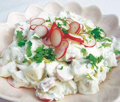 Recept: Färskpotatissallad med rädisor, gräslök och korianderdressing