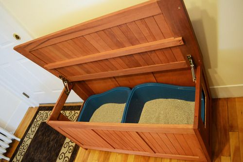 DIY Hidden Litter Boxes - cut two holes in a teak storage bench for litter boxes hidden in plain sight!
