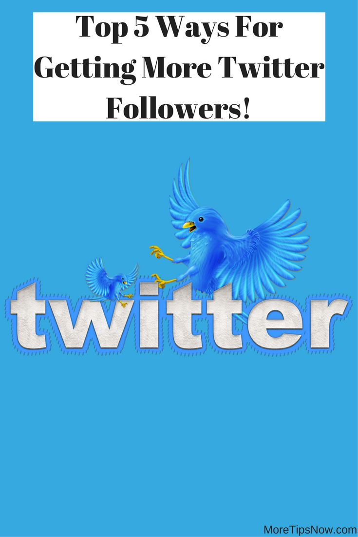 Mejores 27 imgenes de social media en pinterest mercadotecnia en how to get more twitter followers here are 5 great ideas malvernweather Images