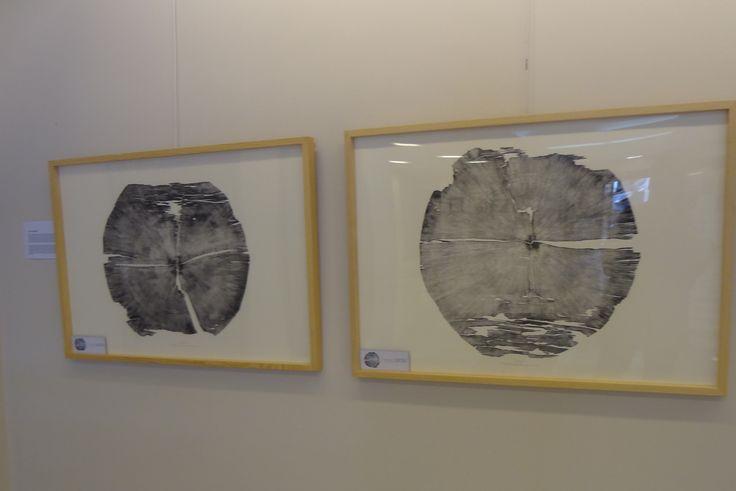 Hatice Bengisu bienal 4. izmir baskı resim ödülü