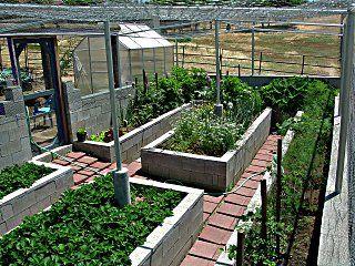 99 Best Vegetable Garden Enclosures Images On Pinterest 400 x 300