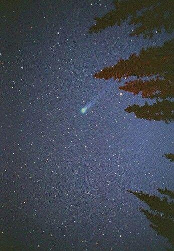 #небо #ночное