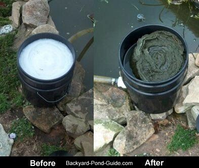 Homemade pond filter before and after picture water for Pool sand filter for koi pond