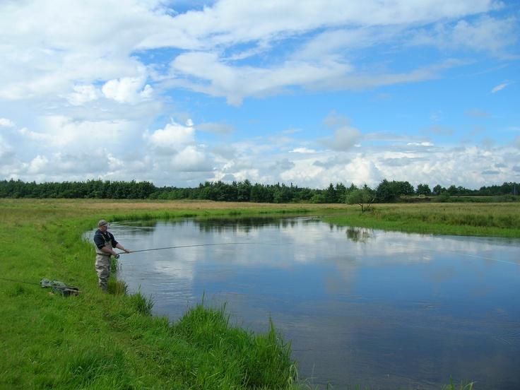Fishing at the Skjern River in Denmark.