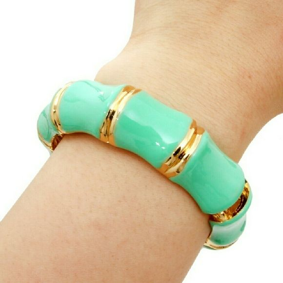 Bamboo Hinged Bangle - Mint Bamboo Hinged Bangle - Mint (5/15/20) More are available in @read247instyle.   Color: Mint Material: Gold Plated   Mint color bamboo shape metal hinge bracelet  Size : 10 inches x 7 inches Read247 in Style  Jewelry Bracelets