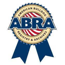 Abra4pms logo