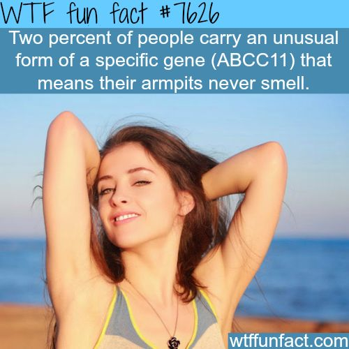 Two percent of people in the world have armpits that never smell - WTF fun facts