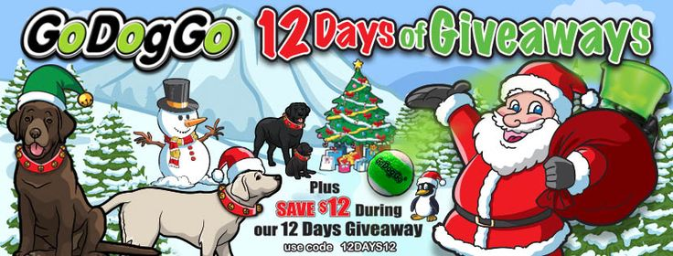 ENTER NOW - GoDogGo's 12 Days of Giveaways! WIN a #GoDogGo #FetchMachine for your #BallCrazy dog, just in time for Santa to drop it down the chimney.  TIME to ENTER DAY 1 of GoDogGo's #12DaysofGiveaways. WINNER number ONE announced today at 8PM PST.   Plus SAVE $12 on GoDogGo Fetch Machine during the 12 Days of Giveaways with Coupon Discount Code 12 DAYS12 at GoDogGoInc.com