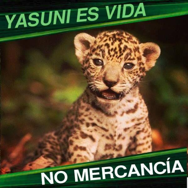 Yasuní es Vida, No Mercancía.
