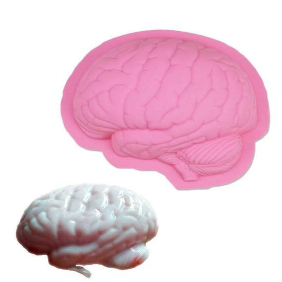 Large 8 Brain Mold Realistic Brain Brainiac Anatomical Brains Candles Soap Scary Zombi Food Halloween Costumes Halloween Fondant Cake Zombie Party Decorations