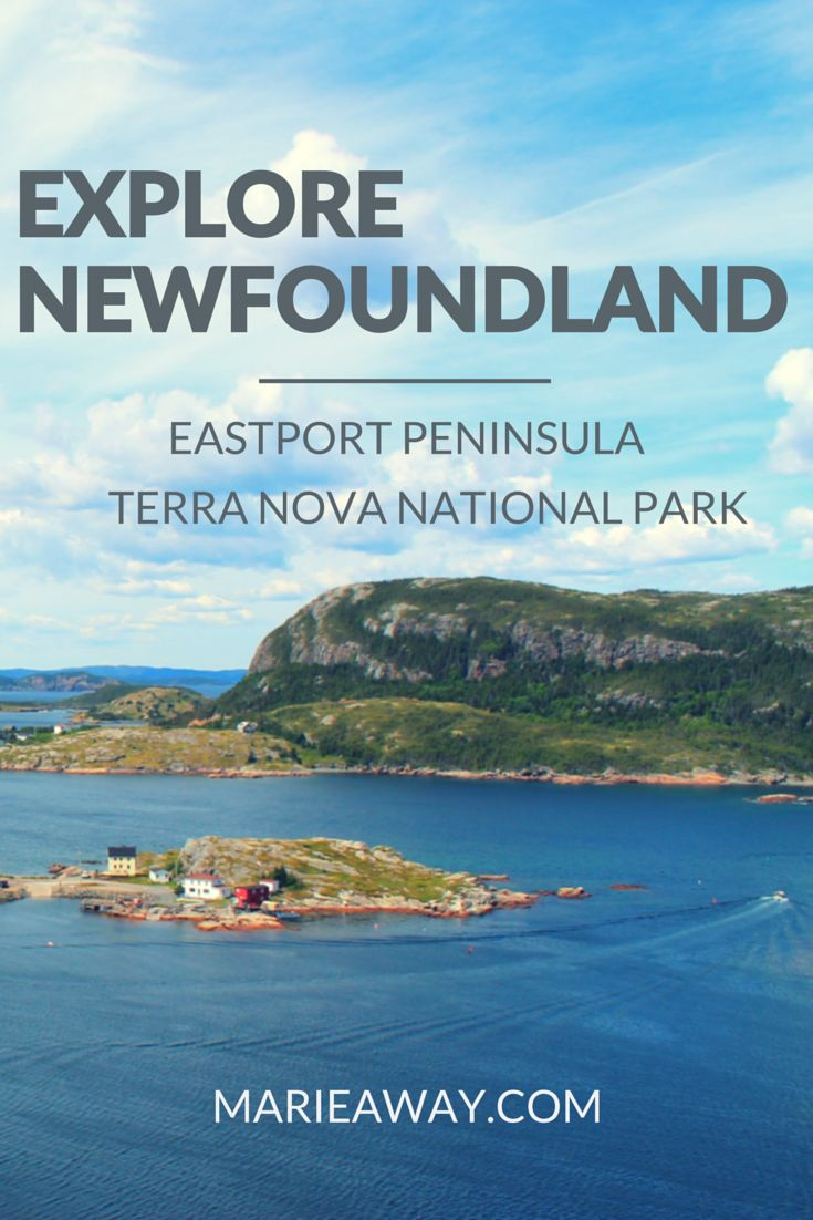 Newfoundland's Terra Nova National Park and Eastport Peninsula are just a few of its gems. Take a look: