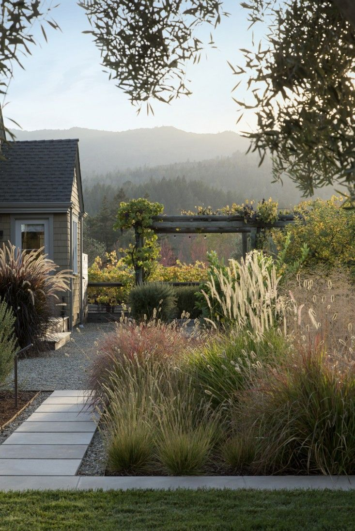 picture perfect ~ want to be there now .... scott lewis vineyard retreat, lush w/ ornamental grasses, northern california