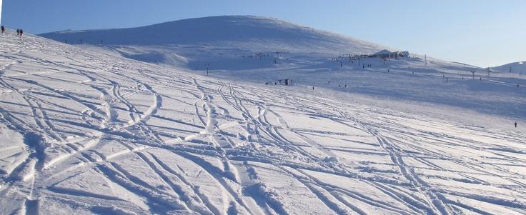 Winter skiing snowboard holidays | Cairngorm Mountain Railway - Aviemore Highlands Scotland
