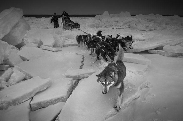 Ragnar Axelsson • Arctic
