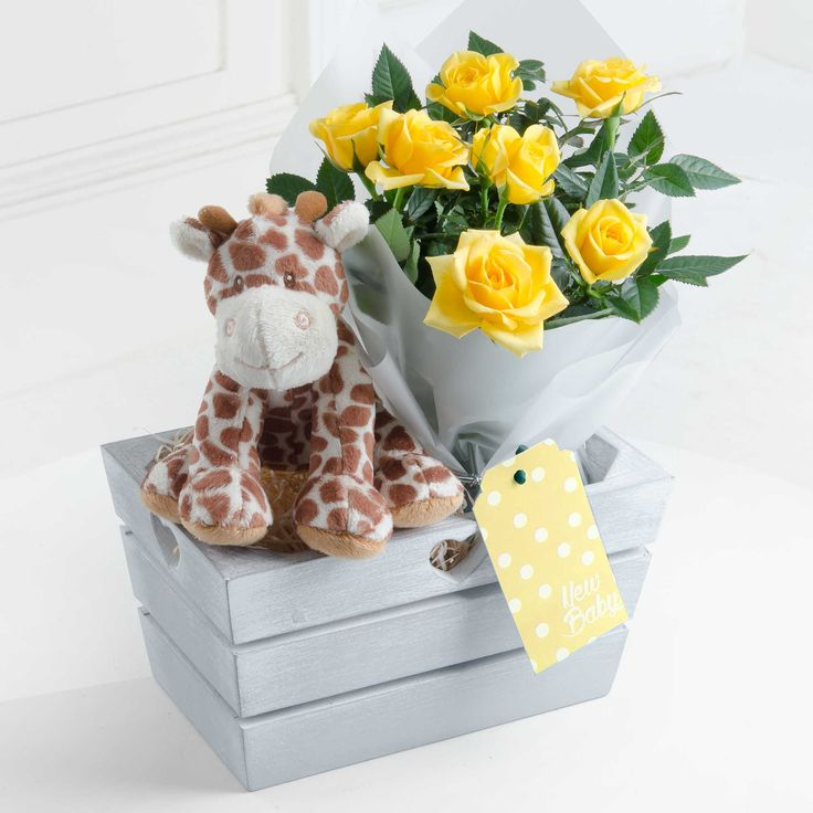 New Baby Gift with Giraffe Toy (Yellow) - Celebrate the arrival of a bouncing new baby with our gift set. Complete with cute giraffe soft toy and yellow rose plant, this is an ideal way to share in the joy of a new baby.