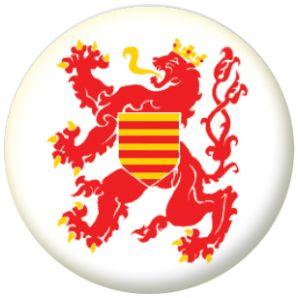 14 Best Belgium Provinces Flag Badges Images On Pinterest
