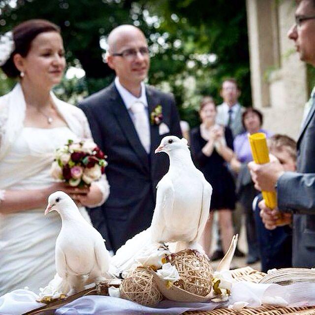 Wedding studio/agency Vera Marsalli Svatby na klíč www.verama.cz  info@verama.cz