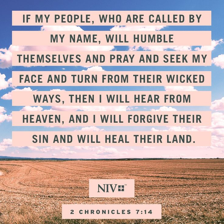 14 If my people, who are called by my name, will humble themselves and pray and seek my face and turn from their wicked ways, then I will hear from heaven, and I will forgive their sin and will heal their land. 2 Chronicles 7:14