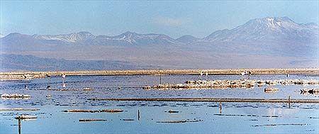 Folha Online - Turismo - América do Sul - Chile - Atacama