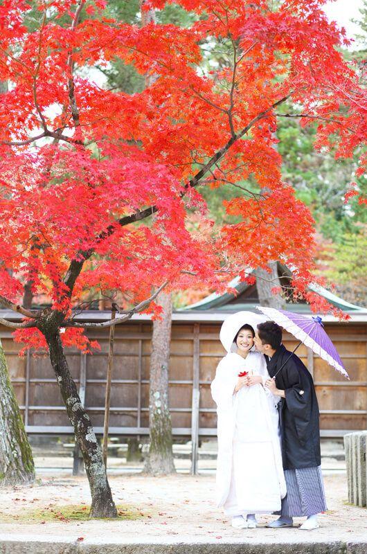 京都好日 前撮り(031/040)