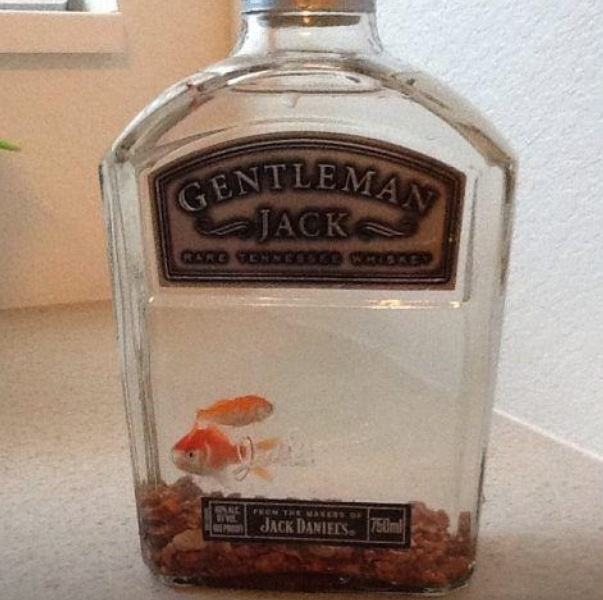 Empty Jack Daniels Bottle Liquor Bottles For Crafts And Decor