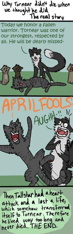 why tornear survived warrior cat - Google Search