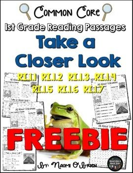 Do you first graders need more nonfiction reading passages to read?! Do you need more access to work that covers the informational text Common Core Standards?!Please download this for a few printables to use with your students!If you love what you see, the full version is available in my store!