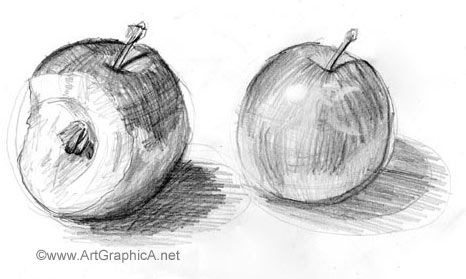 learning to sketch, still life apple drawing