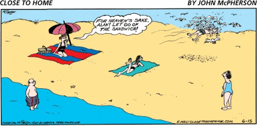 Beach Cartoon Funny Cartoons Pinterest