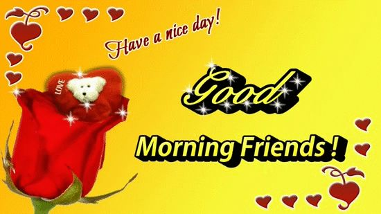 Beautiful rose flower good morning images, greeting, animated e-card! good morning friends.