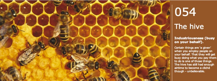 Cliche #54: The hive. Industriousness (busy on your behalf). Certain things are 'a given' when you employ people on your behalf. That they will get busy doing what you pay them to do is one of those things. The hive has still had enough airtime to become a cliché though - unbelievable.