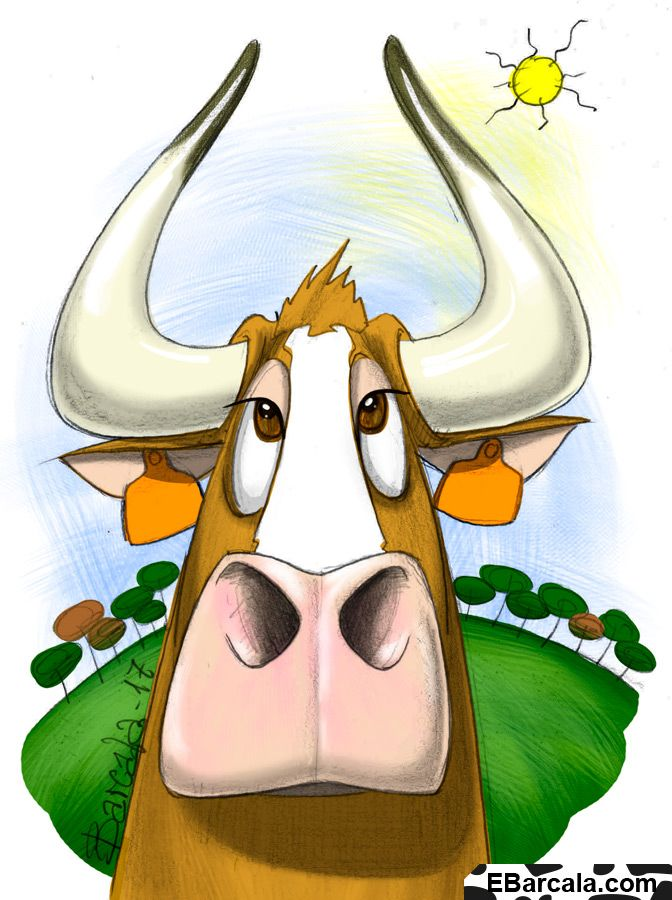 Te gustan las vacas? Do you like cows?