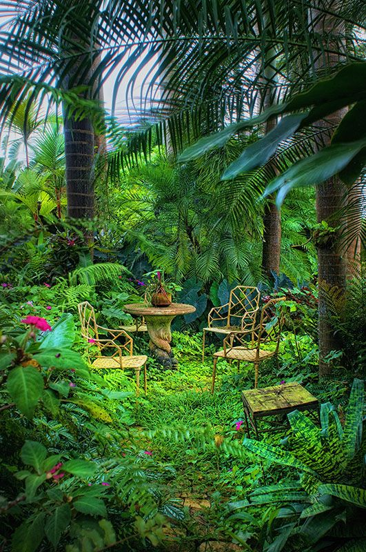 Hunte's Gardens is another spectacular place to explore the natural botanical wonders of the island of Barbados.