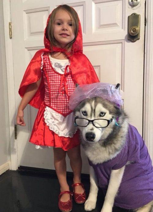 Disfraz de Caperucita Roja, con lobo incluido