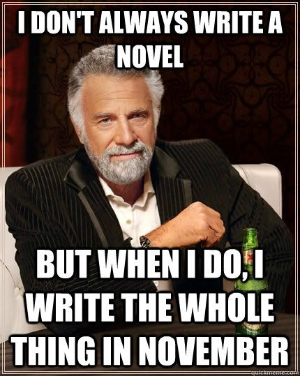 i don't always write a novel but when i do i write the whole thing in november - #nanowrimo