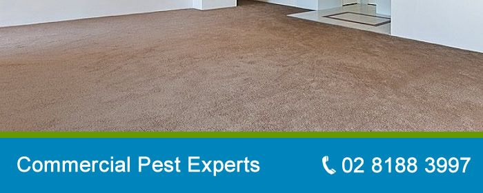 contact-commercial-pest-control-sydney