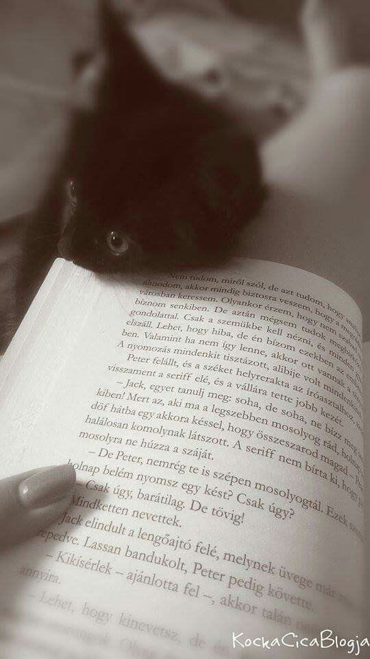 Sándor the evil cat..