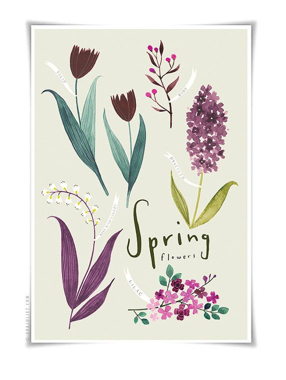Spring Flowers, botanical watercolor print (have)