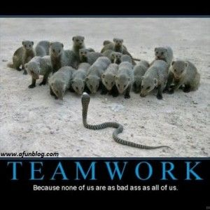 Funny-Motivational-Quotes-for-Teamwork-8 - A Fun Blog ...