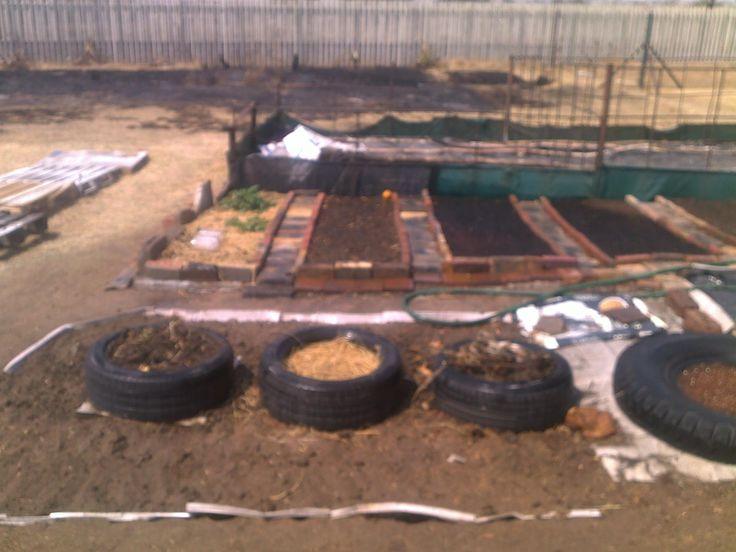 New garden started