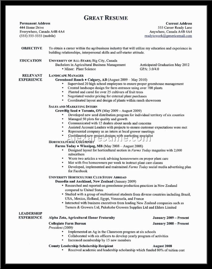 awesome cover letter examples